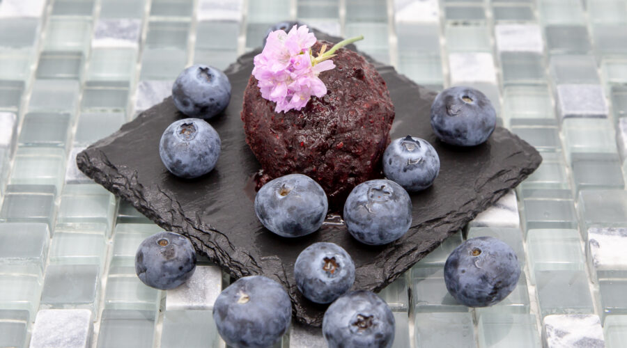 Blueberry sorbet served with blueberries
