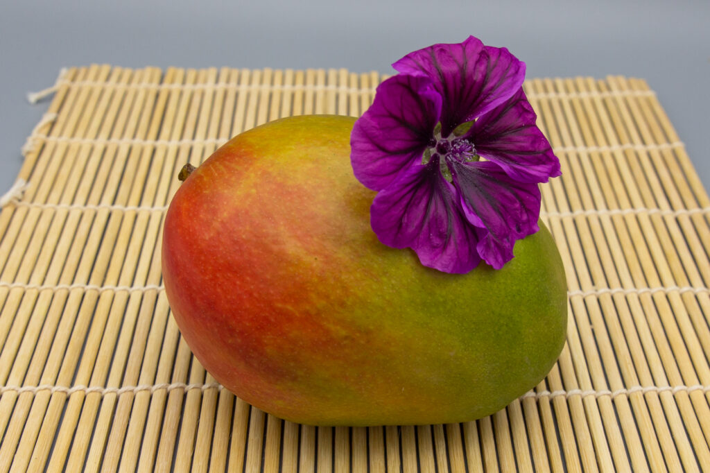 Mango with red-green colouring on bamboo mat with purple blossom