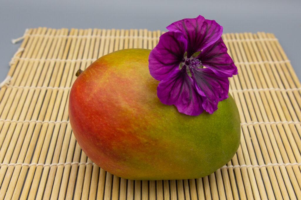 Mango mit rot-grüner Färbung auf Bambusmatte mit lilafarbener Blüte