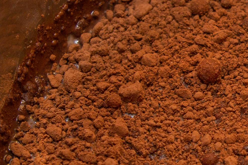 Statt Schokolade sollte man Kakaopulver pur verwenden. Dadurch erhält man den intensivsten Geschmack für sein Schokoladen-Eis.