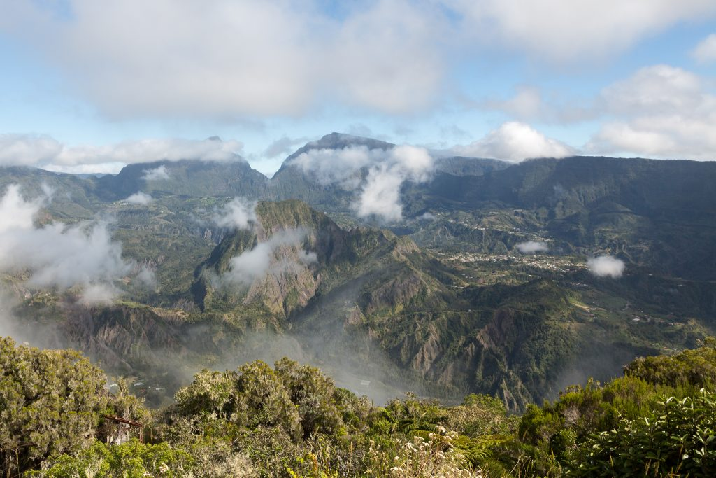 The island of Réunion offers ideal climatic conditions for growing vanilla and gave its name to the Bourbon vanilla.