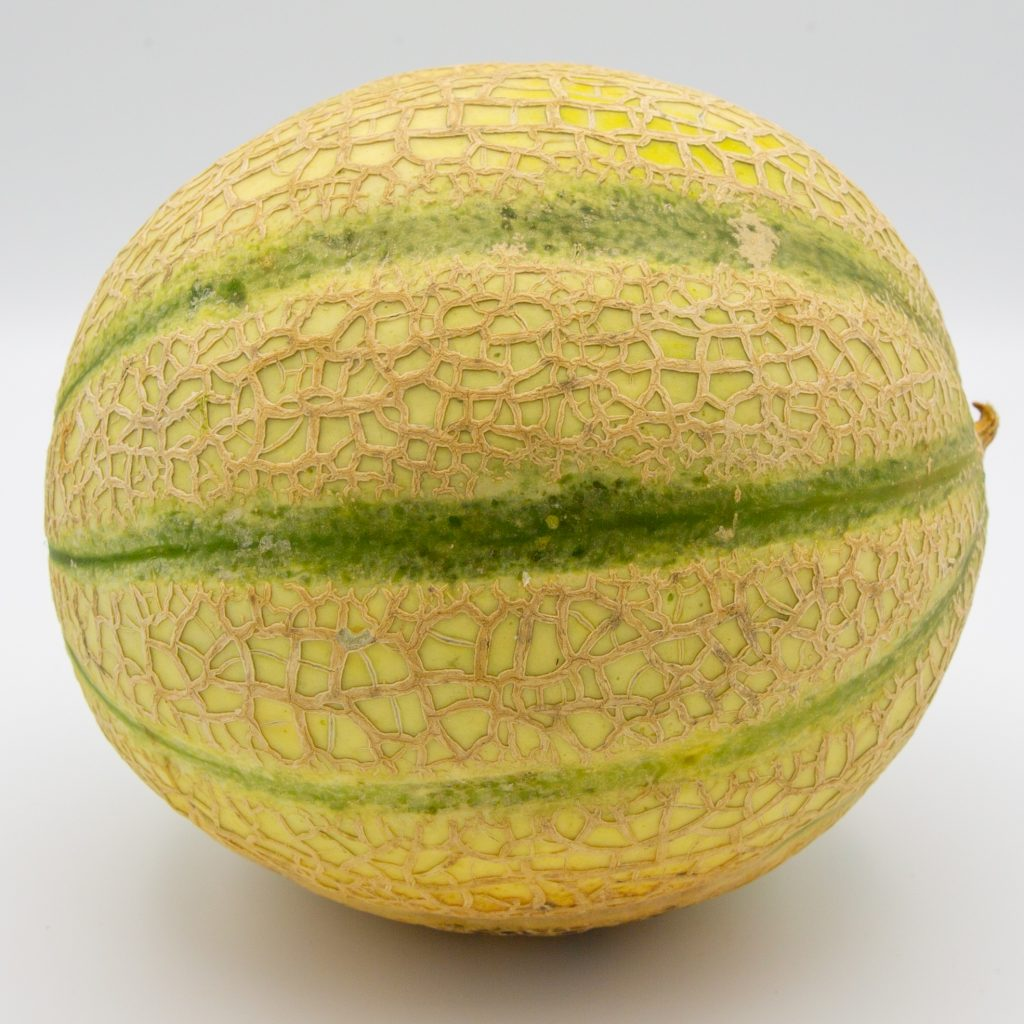 A ripe net melon is the basis for a delicious melon sorbet.